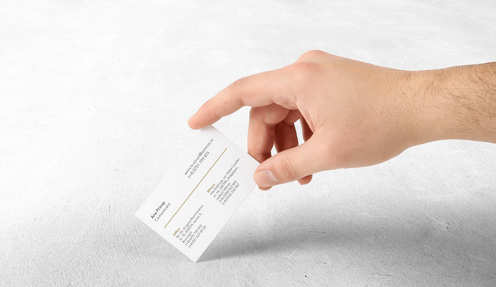01b Avincis mockup – carti de vizita