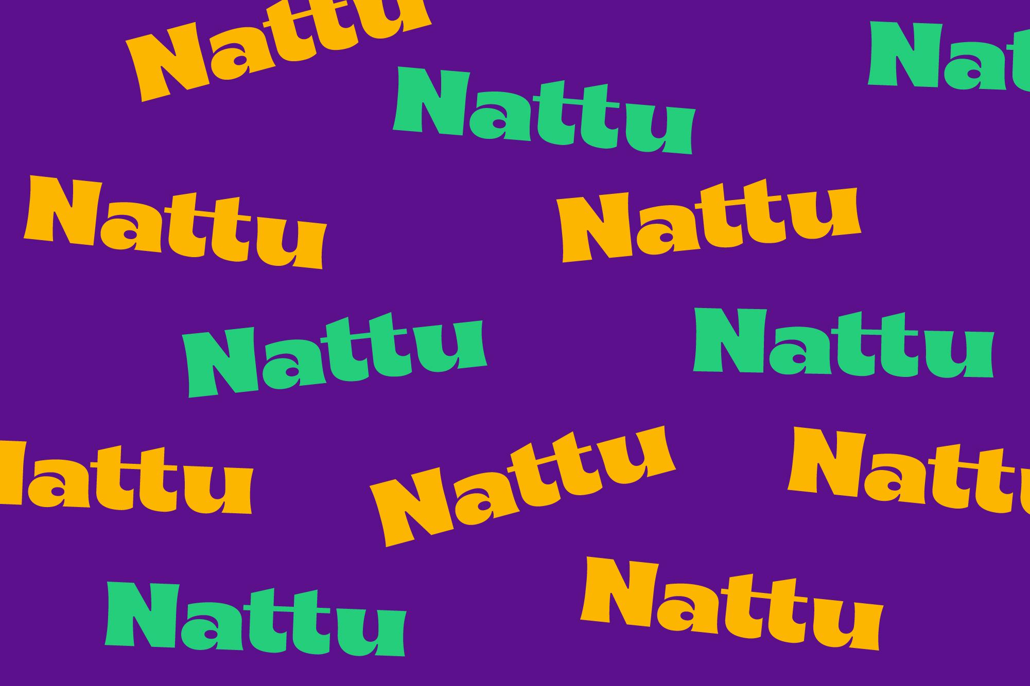 Natu Look&Feel-10