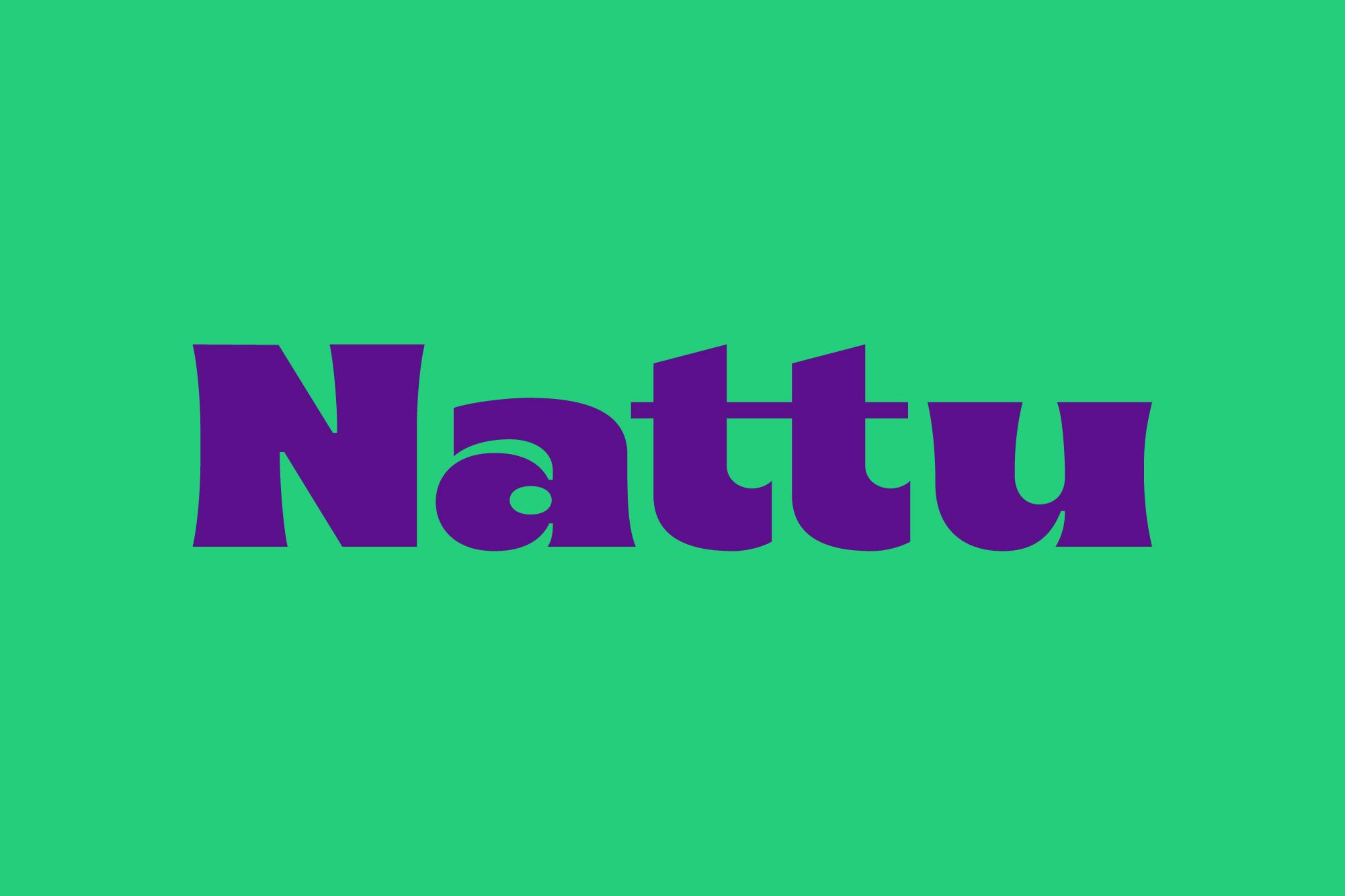 Natu Look&Feel-06